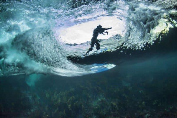 Livet under vann med Kristian og Cees – vinnere av Årets ____________!