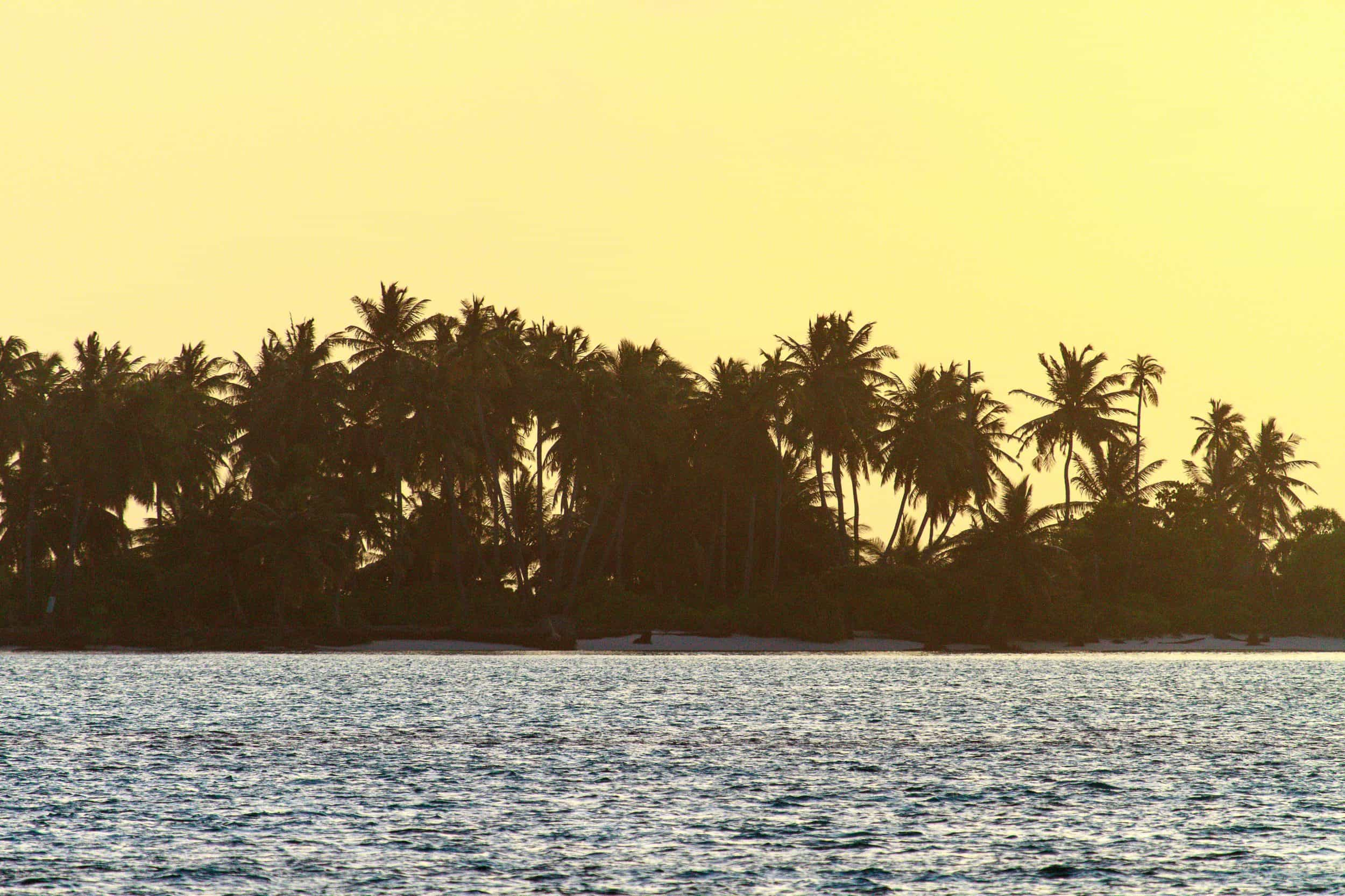 Surf båttur i Maldivene – Surf, spis, hvil, repeat.