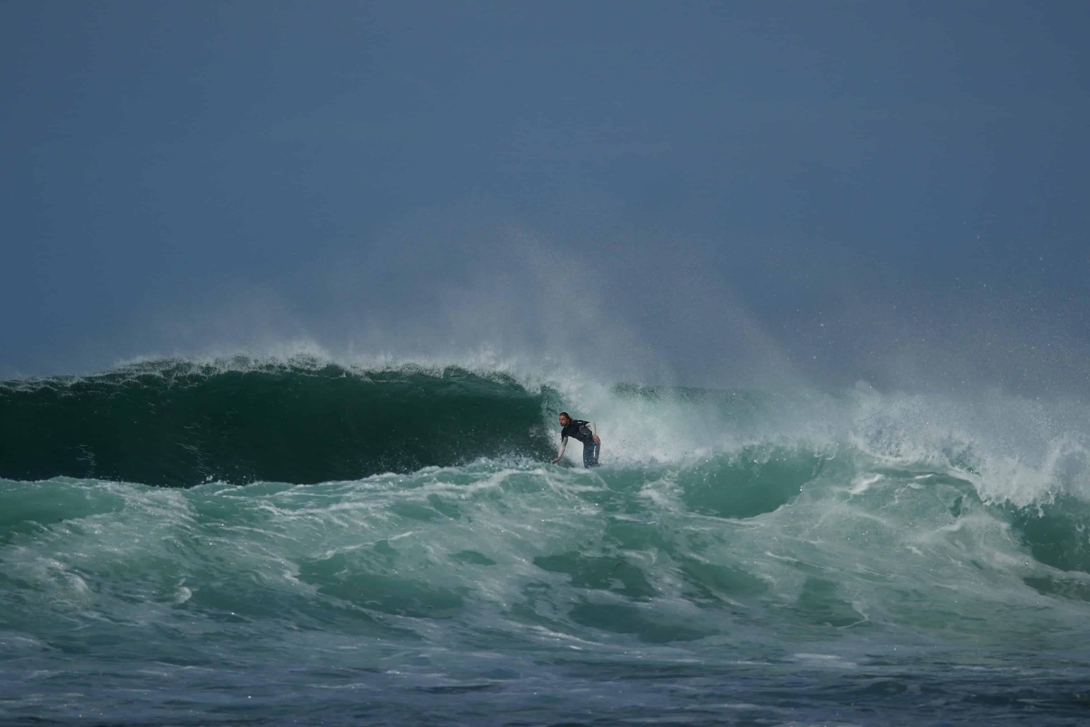 Goa jager tuben - Foto: Sigve Brochmann Rasmussen