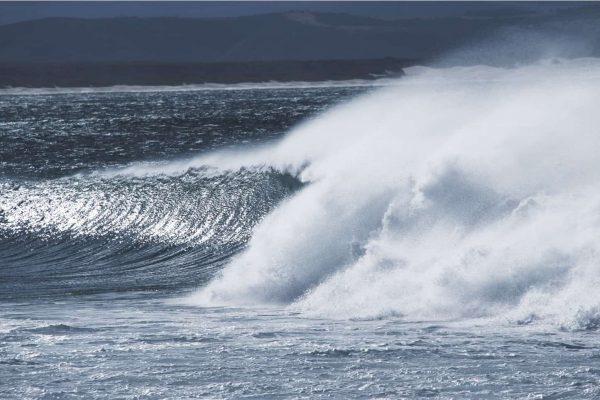Jbay baby – Kaldt vann, kriminalitet og frykten for hai