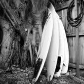 Surfebrett i en av Bondi's bakgårder