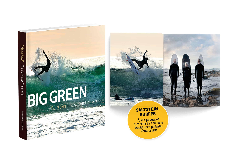 The big green av Jan Nilsen